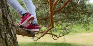 The pink shoes and jeans of a person climbing a tree are visible