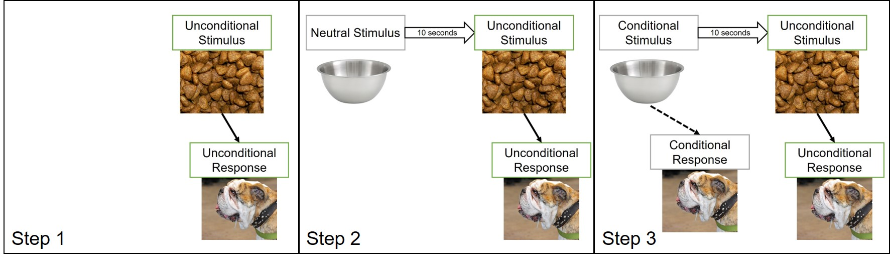 How we can classically condition a formerly neutral stimulus as a conditional stimulus