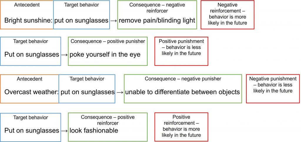 The answers to the activity are displayed. In the first example, the antecedent to the target behavior is the bright sunshine. The target response is putting on sunglasses. The consequence of removing pain/bright sunshine (or blinding light) is a negative reinforcer, which makes the overall contingency negative reinforcement. In the second example, the target behavior is more likely in the future. The consequence of poking yourself in the eye when putting on sunglasses is a positive punisher, and the overall contingency is positive punishment. The target behavior is less likely in the future. In the third example, the antecedent to the target behavior is the overcast weather. The target response is putting on sunglasses. The consequence of being unable to differentiate between objects is a negative punisher. The overall contingency is negative punishment, and the target behavior is less likely in the future. In the fourth example, the target behavior is putting on sunglasses. The consequence is looking fashionable, which is a positive reinforcer. The overall contingency is positive reinforcement, and the target behavior is more likely in the future.